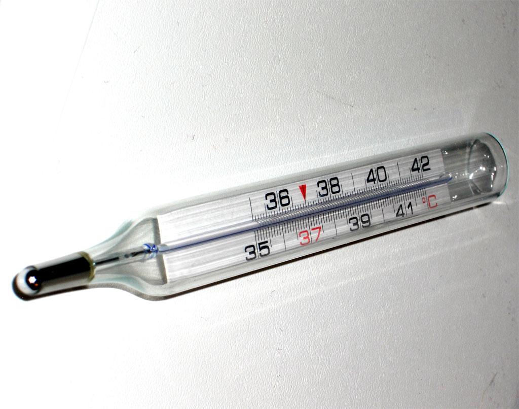 Termometro 11 Area Comunicazione Orientadores, faculdade de medicina da universidade de são paulo. area comunicazione universita degli studi di napoli federico ii