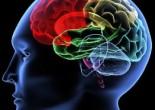 Master in Neuroscienze Cliniche, al via la II edizione