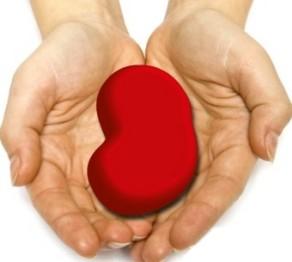 donazione rene