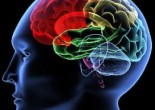 Master in Neuroscienze Cliniche, al via la IV edizione
