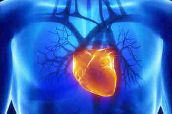Infarto del miocardio e Coronavirus, lo studio del Policlinico Federico II pubblicato sulla prestigiosa rivista Circulation